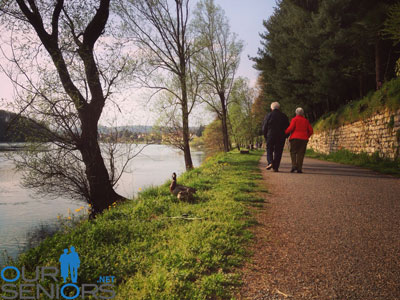 Couple Senior Strolling