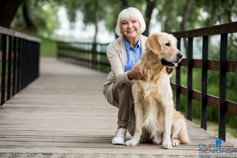 These are the best pets for seniors