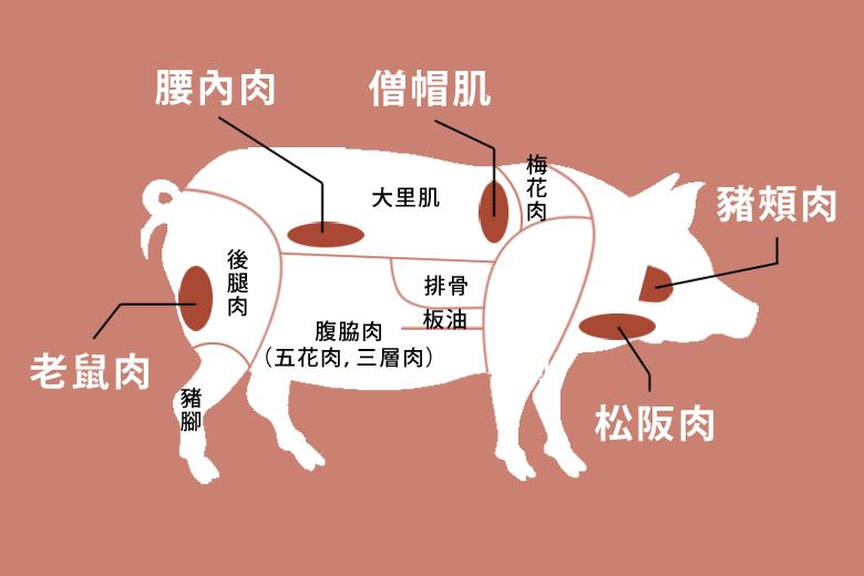 紅色底圖的豬各部位,臉頰肉、松阪肉、老鼠肉、腰內肉、僧帽肌、梅花肉、大里肌、腹脇肉、後腿肉、豬腳