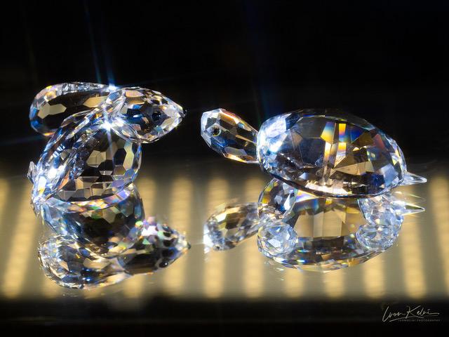 P5090954_crystal_covid