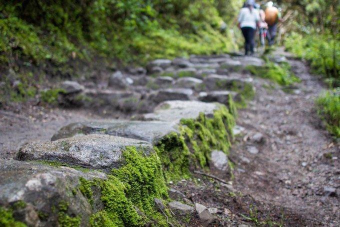 our simple adventure machu picchu inca trail-35