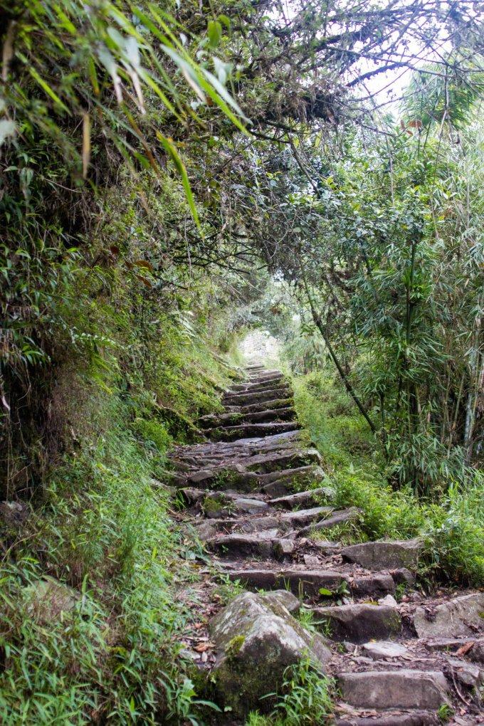 our simple adventure machu picchu inca trail-95