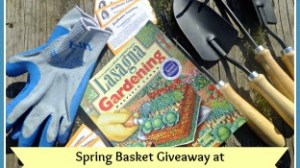 Spring Basket Giveaway From Covenant Ranch Trucking for Azure Standard!