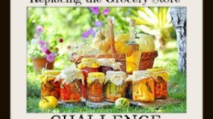 Replacing the Grocery Store Challenge Day 14 – Start a Chore Schedule and Garden Journal