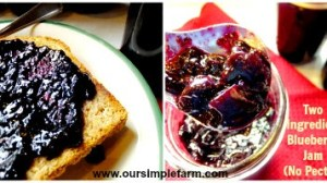 Replacing the Grocery Store Challenge Day 18 – Two Ingredient Blueberry Jam and Elderberry Jam(No Pectin)