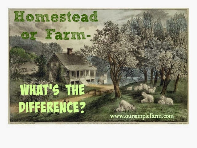 Homestead or Farm - What's the Difference?