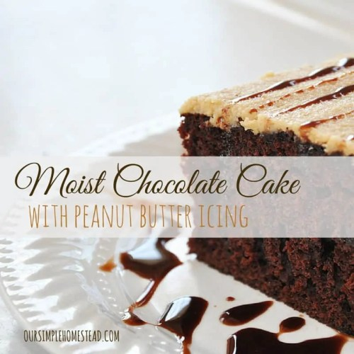 Moist Chocolate Cake with Peanut Butter Icing