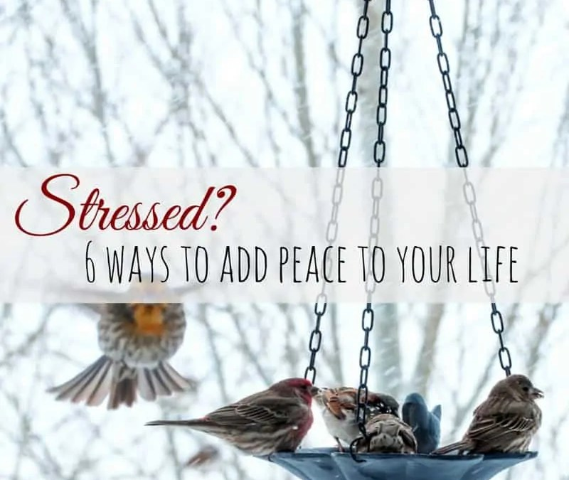 Add Peace to Your Life