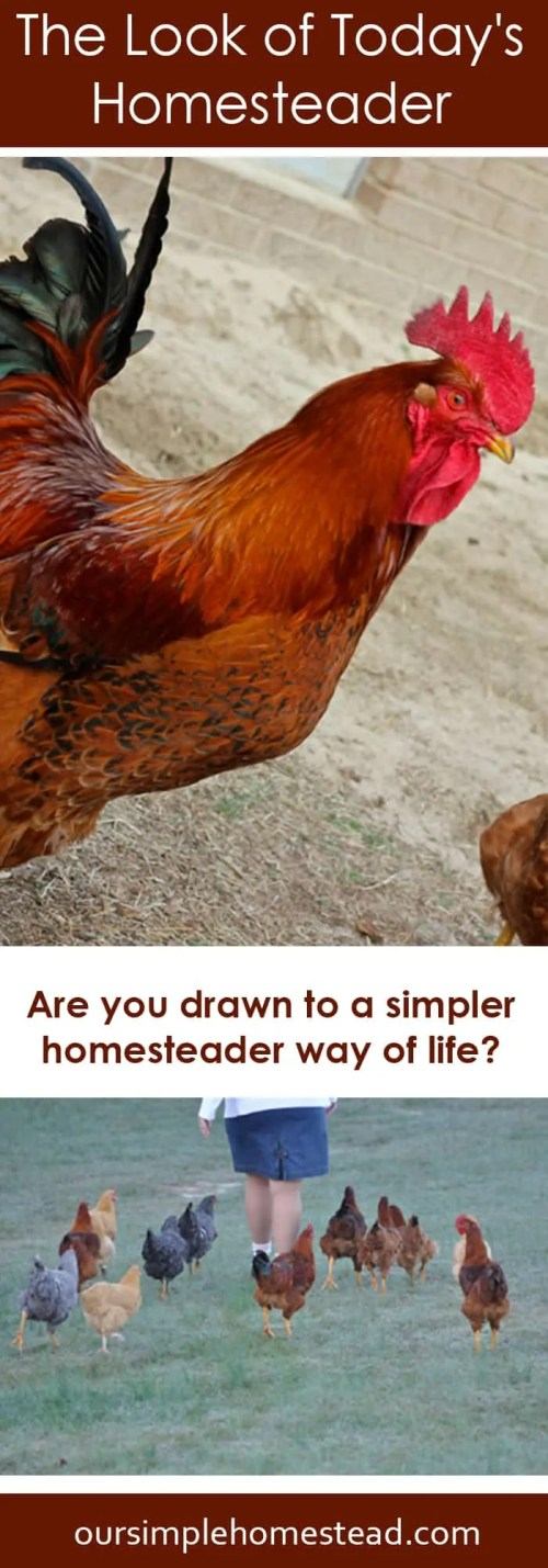 Are you drawn to a simpler homesteader way of life?