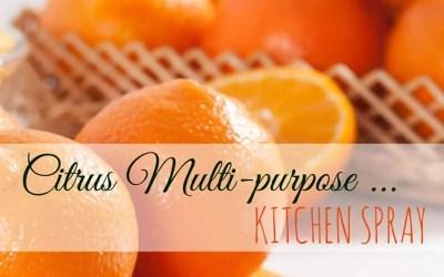 DIY Citrus Multi-purpose Kitchen Spray