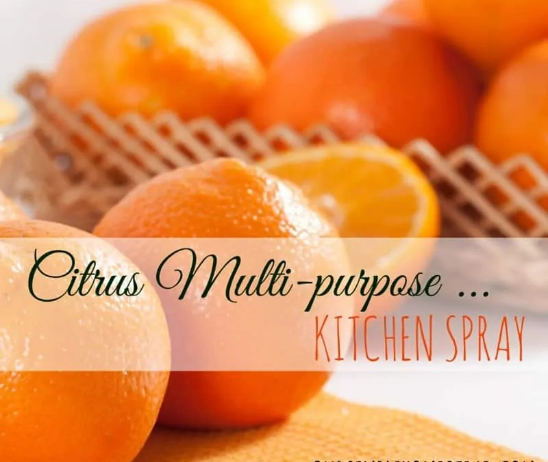 DIY Citris Multi-purpose Kitchen Spray