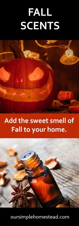 Fall Scents - Pumpkin Spice