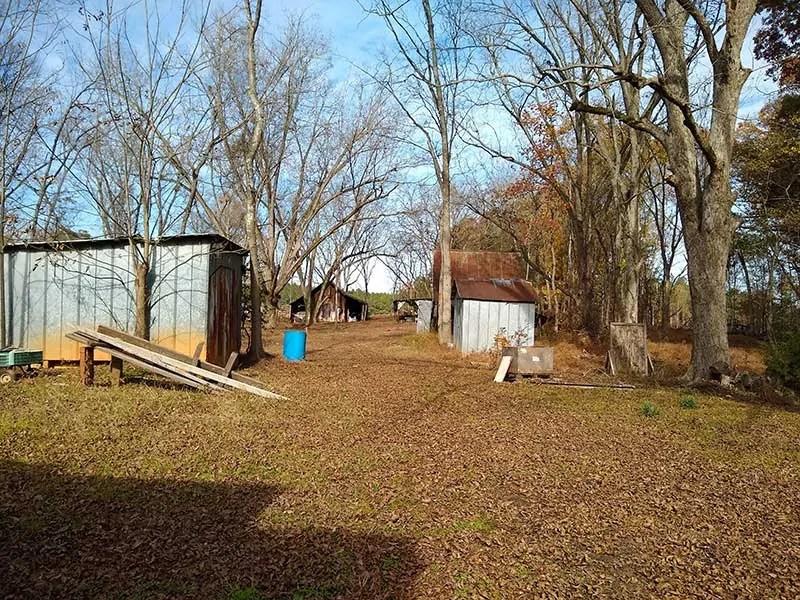 cost of backyard farming