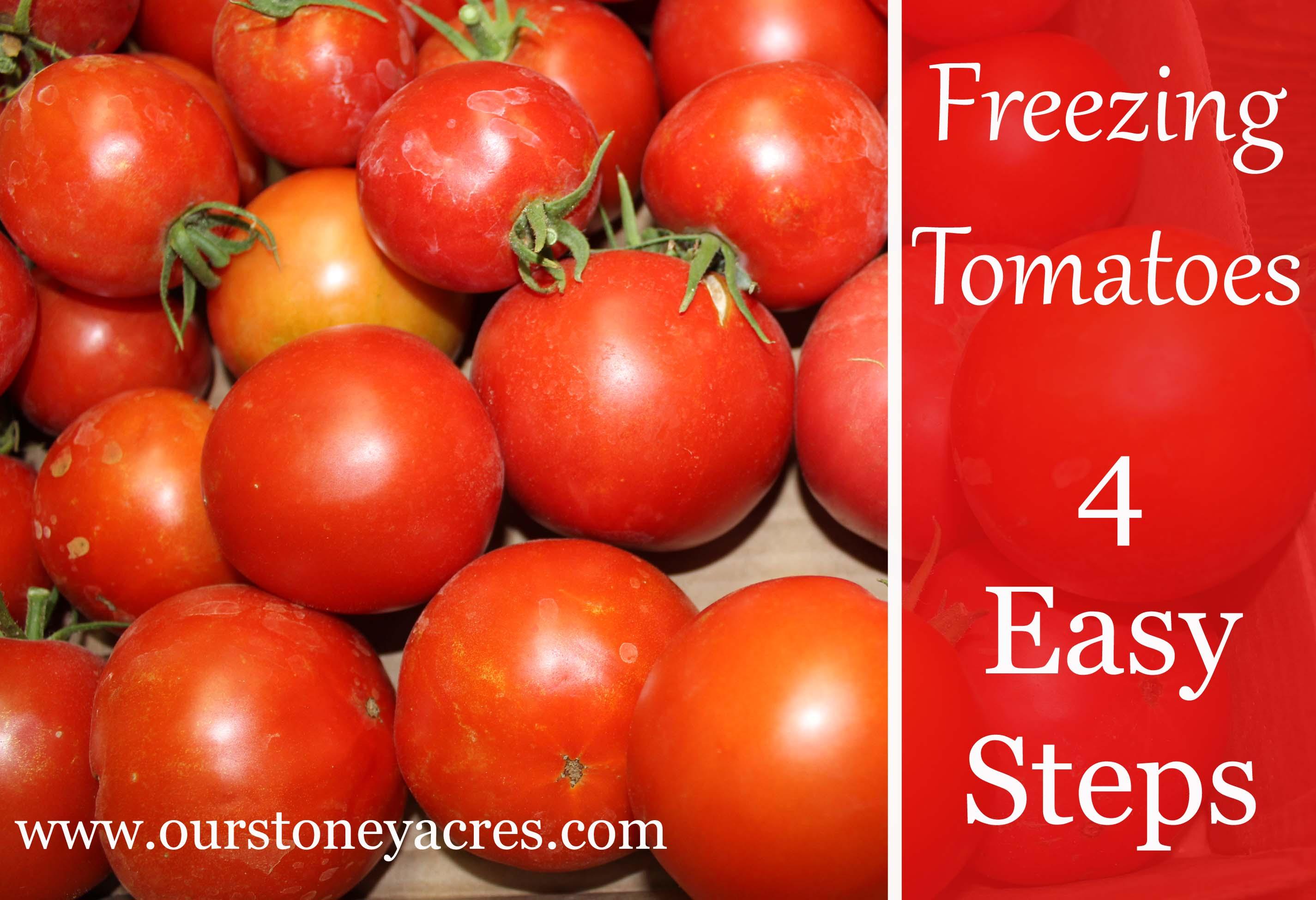 Freezing Tomatoes 4 Easy Steps Stoney Acres