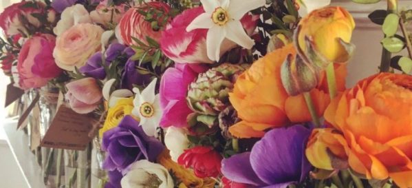 cut flowers in little glass vases