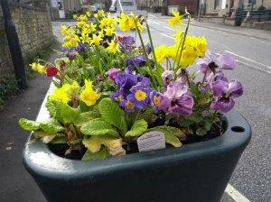 Linthwaite in Bloom planter