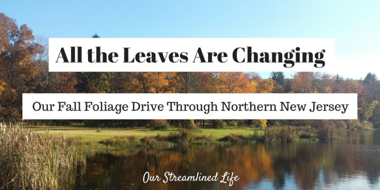 all-the-leaves-are-changing