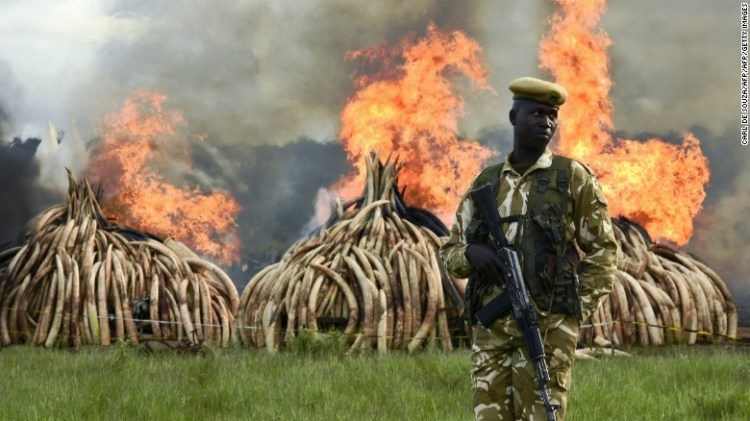 160430125344-kenya-ivory-burning-exlarge-169.jpg