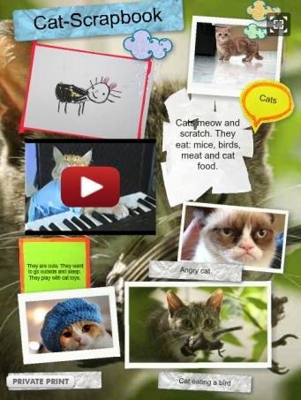 http://annasow.edu.glogster.com/cats