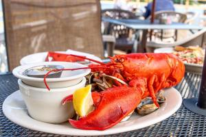 Nautilus-Restaurant-Belfast-Maine-Lobster
