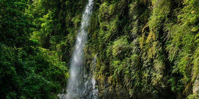 [花蓮瑞穗 景點] 在渡假村中悠閒賞瀑布跟賞螢,富源森林遊樂區蝴蝶谷龍吟瀑布