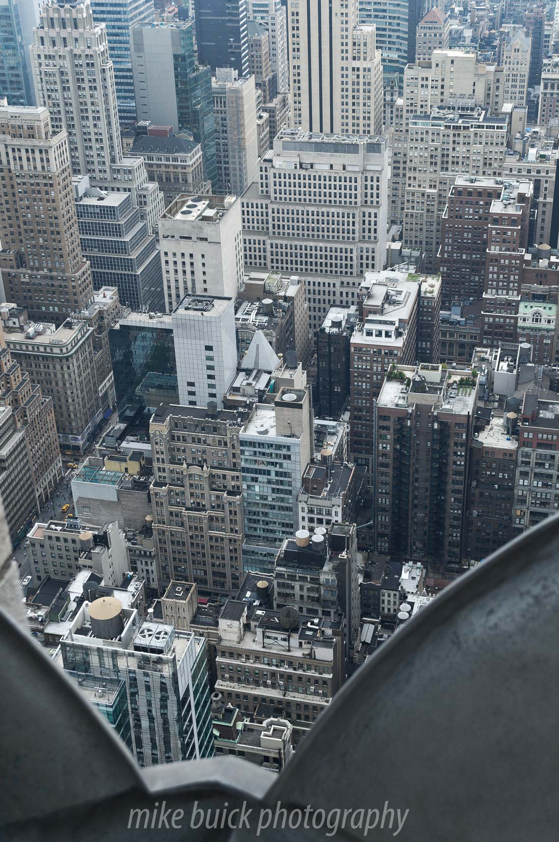 New York Perspectives