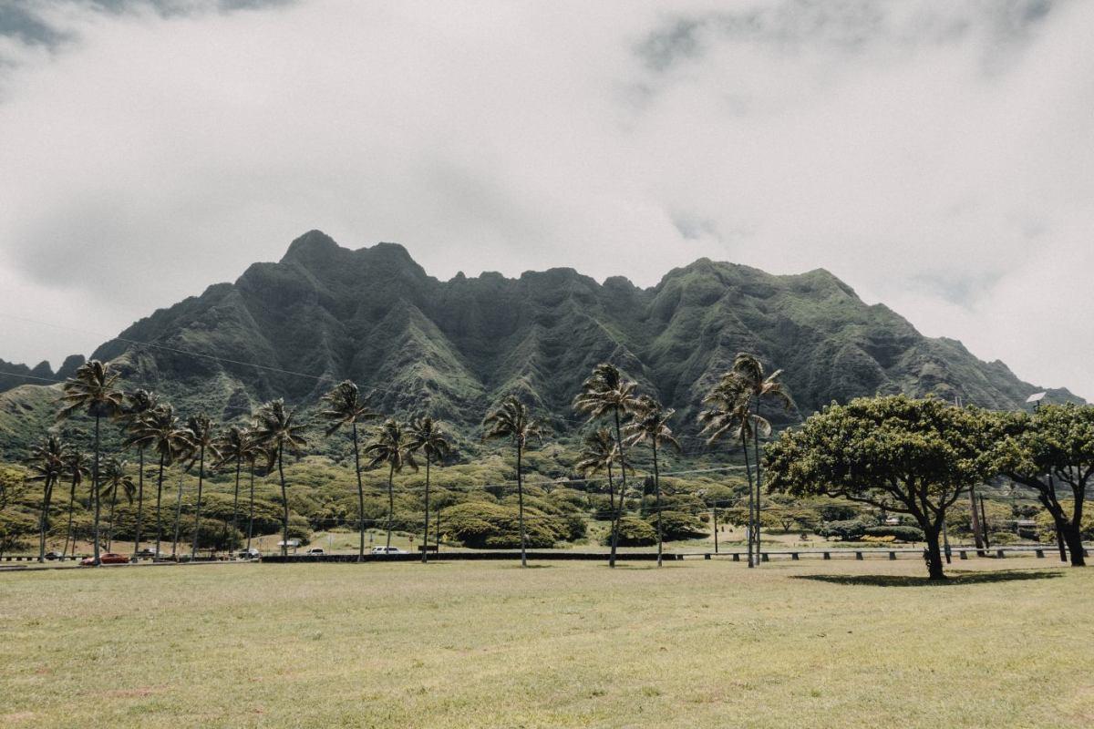 Was kostet eine Reise nach Hawaii?