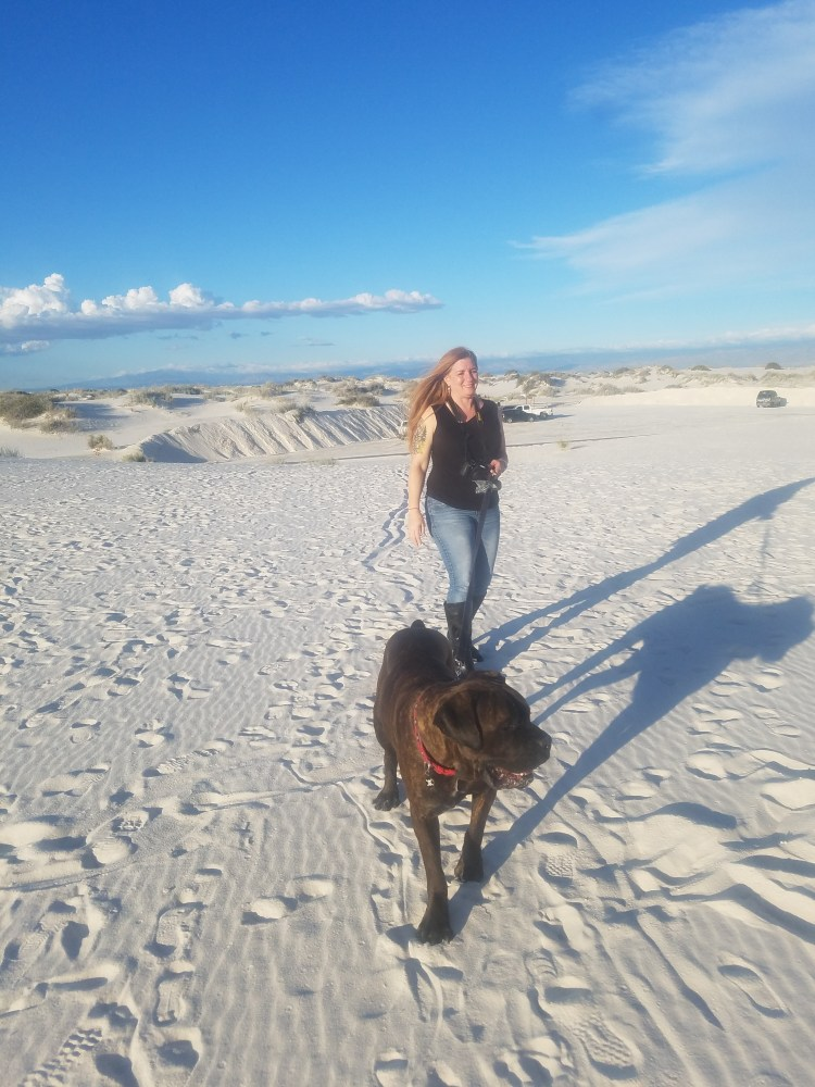 Achilles the Cane Corso at White Sands