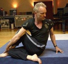 yoga_sting