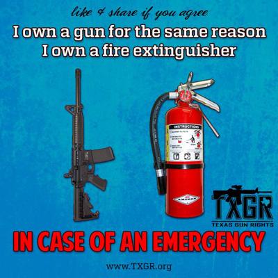 gun_law