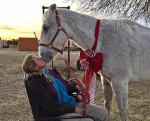 dallas_horse