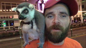 houston_lemur