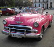 Old cars were common in tourist spots. Note the newer ones in the background. P on the plate means private vehicle.