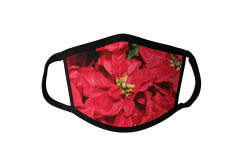 Poinsetta Face Mask Poinsettia Face Mask