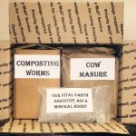 Worm Composting Lodge Starter Kit - FREE SHIPPING US Only!!