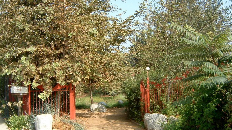 Oros Green Street and Steelhead Park