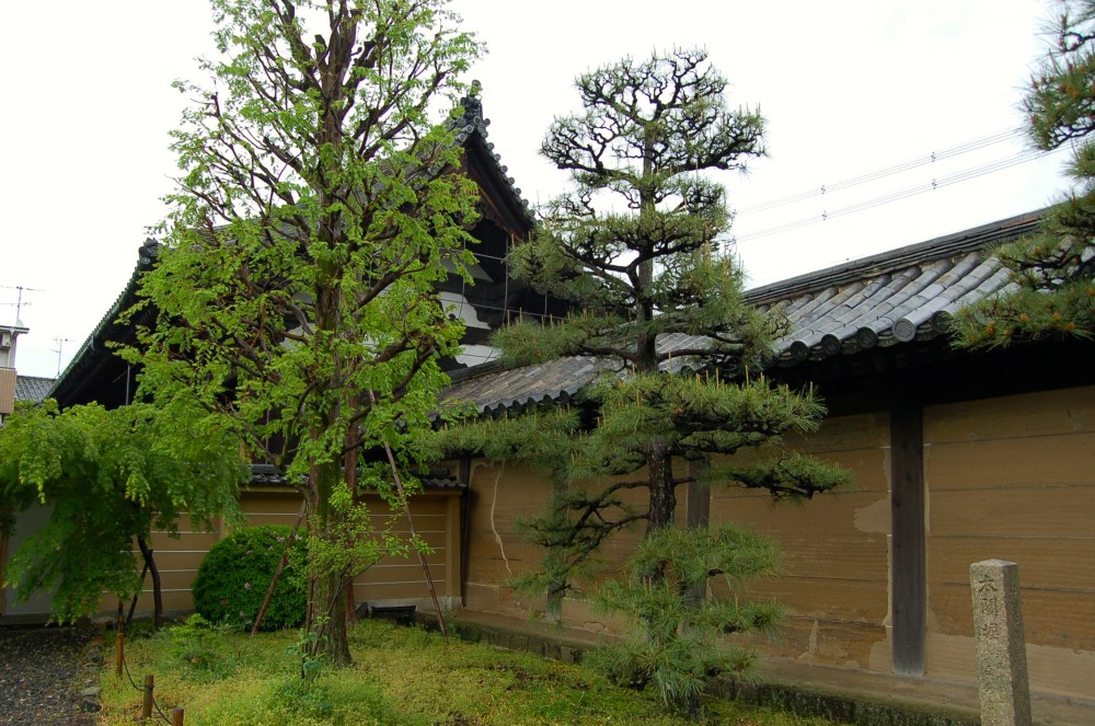 The Ancient Capital of Kyoto (4/6)