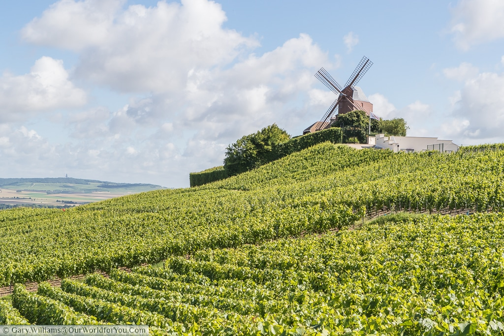 The G.H. Mumm Windmill overlooking the vineyards in Verzenay, France.