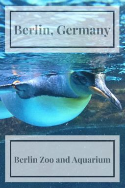 Want a place to take the family in Berlin! Head to the Berlin Zoo and Aquarium for a day of fun.