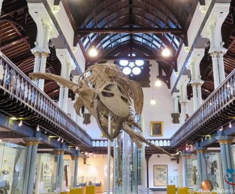 The Hunterian Museum