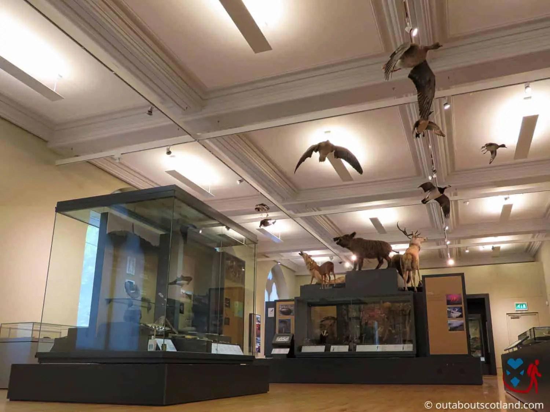 McManus Museum (14 of 19)