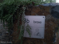 B for brave (800x600)