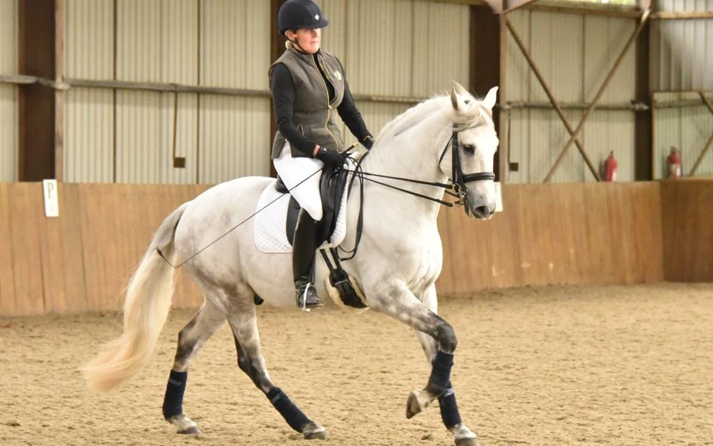 Paul Hayler trains at Southern Equestrian Training seminar