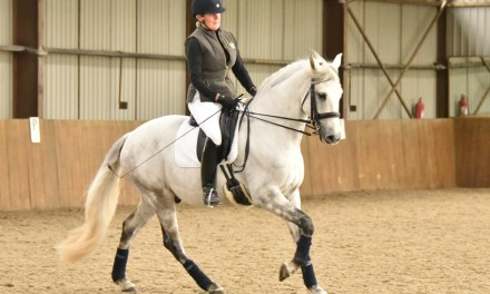Paul Hayler trains at Southern Equestrian Training seminar