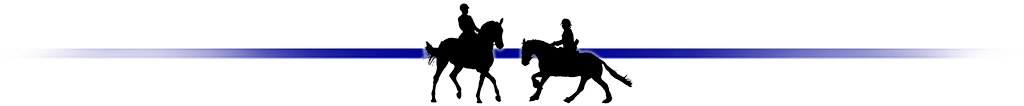 Dressage results: Saddlesdane, Kent