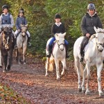 RAAS — where horses become an education for life