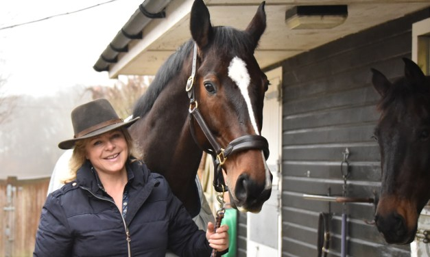 A 'business dude' who improves horses' lives