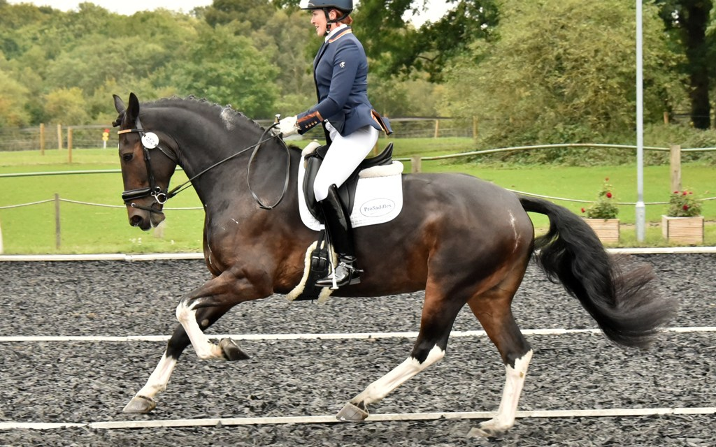 Owners, riders and horses go the extra mile