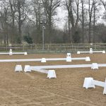 Dressage riders can look forward to more shows at Surrey venue