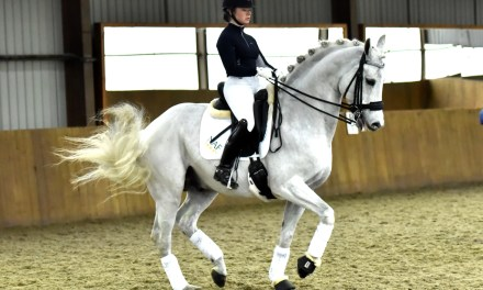 All dressage is about Balance: part 1